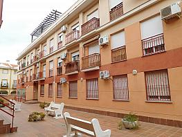 Fachada - Piso en venta en calle Camino del Jueves, Armilla - 263557451