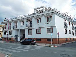 Fachada - Piso en venta en calle Camino de Churriana, Armilla - 276683883