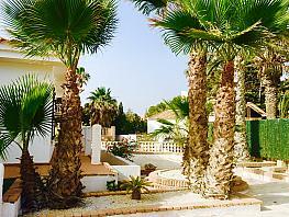Jardín - Casa en alquiler en calle Pico del Aguila, Águilas - 387975342