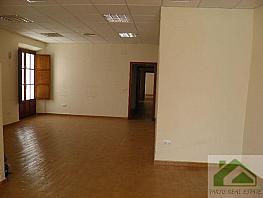 Foto1 - Local comercial en alquiler en Barrio Bajo en Sanlúcar de Barrameda - 339359213