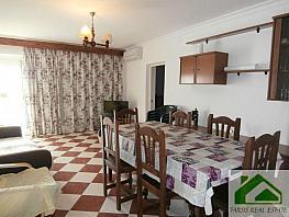 Foto1 - Piso en alquiler en Sanlúcar de Barrameda - 339364157