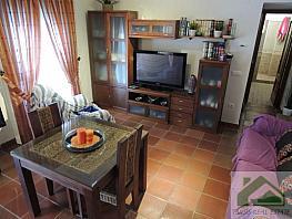 Foto1 - Piso en alquiler en Sanlúcar de Barrameda - 339372983