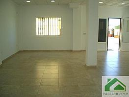 Foto1 - Local comercial en alquiler en Sanlúcar de Barrameda - 339379661