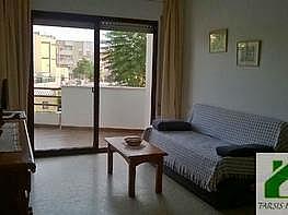 Foto1 - Piso en alquiler en Sanlúcar de Barrameda - 339384002