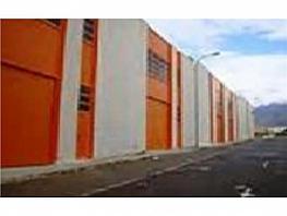Nave industrial en alquiler en Mojonera (La) - 306331613