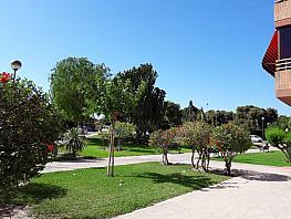 Foto - Piso en venta en Tombola en Alicante/Alacant - 329278635