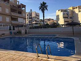 Imagen sin descripción - Piso en alquiler en Playa Mucha Vista en Campello (el) - 328250445
