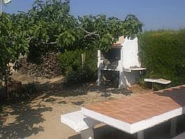 Terrain de vente à Castellví de la Marca - 252166001