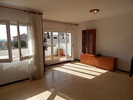 Salón - Piso en alquiler en calle La F, Ràpita, La en Santa Margarida i els Monjos - 395892998