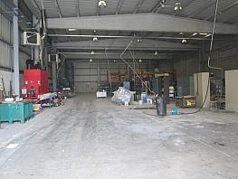 Planta baja - Nave industrial en alquiler en calle Jupiter, Distrito4-Noroeste en Torrejón de Ardoz - 304841635