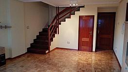 Salón - Dúplex en alquiler en calle Alejandro Pedrosa, Ourense - 395384414