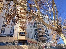 Piso en alquiler en calle Felix Rodriguez de la Fuente, Jacinto Benavente-Ricardo Soriano en Marbella - 378262016