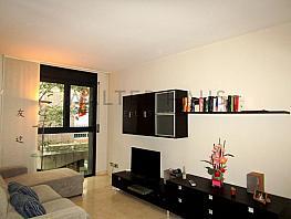 Salón-coemdor - Piso en venta en Vila de Gràcia en Barcelona - 330602212