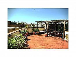 Terraza - Piso en alquiler en Ciutat vella en Barcelona - 379834785