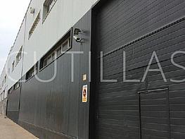 Imagen 1 - Nave industrial en alquiler en Sant Feliu de Llobregat - 160363432