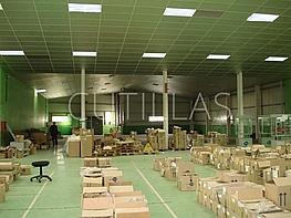Nau industrial en lloguer Cornellà de Llobregat - 160363546