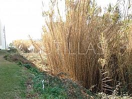 Imagen 1 - Terreno industrial en venta en Prat de Llobregat, El - 160363996