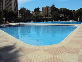 Piscina - Piso en alquiler de temporada en calle Costablanca, Playa de San Juan - 326258031