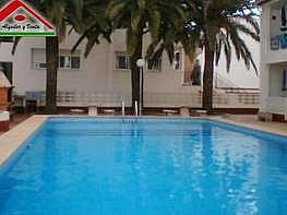 Foto1 - Apartamento en alquiler en Vinaròs - 161517919