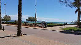 Imagen sin descripción - Local comercial en alquiler en Can Pastilla en Palma de Mallorca - 378448937