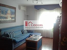 Salón - Piso en alquiler en Yeles - 285277886