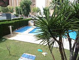 Foto - Piso en venta en calle Avenida del Mediterraneo, Benidorm - 333369304