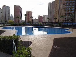 Foto - Piso en venta en calle Levante, Levante en Benidorm - 297851276