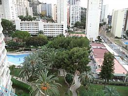 Foto - Estudio en venta en calle Levante, Levante en Benidorm - 324241335