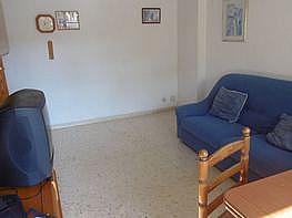 Foto - Apartamento en venta en calle Poniente, Poniente en Benidorm - 326524960