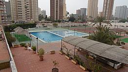 Foto - Apartamento en venta en calle Levante, Levante en Benidorm - 336038292