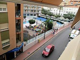 Foto - Piso en venta en calle Centro, Zona centro en Benidorm - 336038331