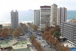 Foto - Piso en venta en calle Avenida Europa, Levante en Benidorm - 350796149