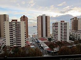 Foto - Apartamento en venta en calle Levante, Levante en Benidorm - 352880505