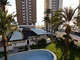 Foto - Piso en venta en calle Avenida del Mediterraneo, Benidorm - 364813648