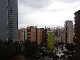 Foto - Piso en venta en calle Rincon de Loix, Rincon de Loix en Benidorm - 381460664