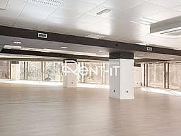 1450 01.jpg - Oficina en alquiler en Eixample dreta en Barcelona - 288844564