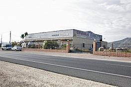 Nave industrial en alquiler en carretera Bigastro, Orihuela - 255714648
