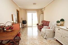 Apartamento en alquiler en calle La Sal, Playa del Cura en Torrevieja - 320754174