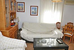 Bungalow en alquiler en calle Cibeles, Torrelamata - La Mata en Torrevieja - 381977534
