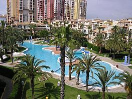 Piso en alquiler en calle Roentgen, Playa de los Locos en Torrevieja - 381977613