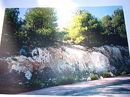 Foto - Piso en venta en calle Pinares de San Anton, Pinares de San Antón en Málaga - 177996645