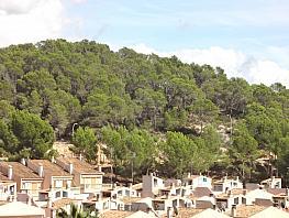 Wohnung in verkauf in Calvià - 317801278