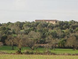 Foto - Hotel en venta en Vilafranca de Bonany - 283277910