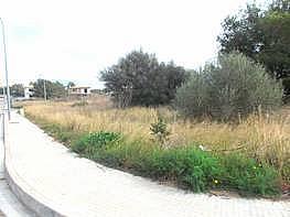 Baugrundstück in verkauf in Marratxí - 248116488