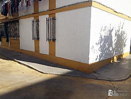 Foto 1 - Piso en venta en calle San Eulogio, Palma del Río - 295002199