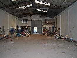 Nave industrial en alquiler en calle Martinete, Someso-Matogrande en Coruña (A) - 362189114