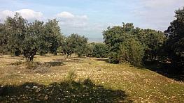 Grundstück in verkauf in calle Poligono, Villa del Prado - 357246530