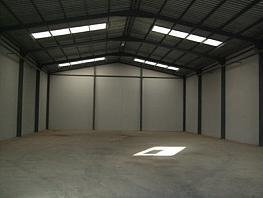Foto - Nave industrial en alquiler en calle Polindbase, Molina de Segura - 265137393