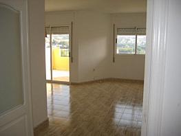 Foto - Piso en alquiler en calle Altorreal, Altorreal en Molina de Segura - 322773765