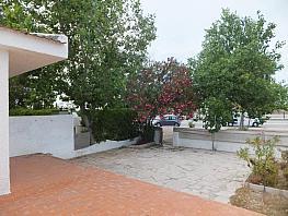 Foto - Chalet en venta en calle Riomar, Deltebre - 294062954